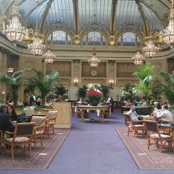 Event Interior Plantscape Design