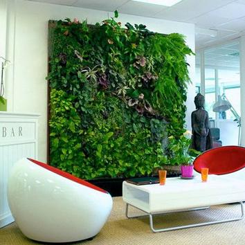 Artificial Plant Sales
